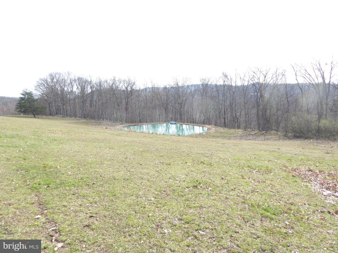 土地,用地 为 销售 在 Jennings Pyles Road Jennings Pyles Road Romney, 西弗吉尼亚州 26757 美国