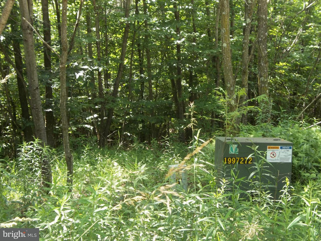 Additional photo for property listing at Westview Crossing Rd  Grantsville, Maryland 21536 United States