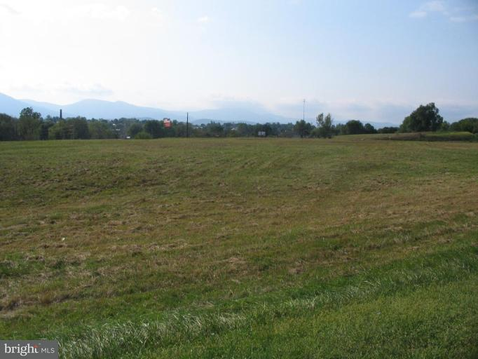 Land for Sale at Cottage Dr Luray, Virginia 22835 United States