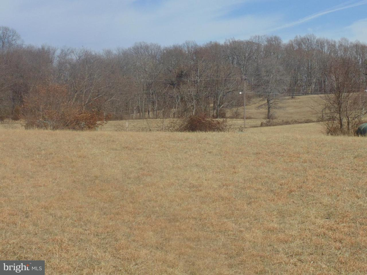 Land for Sale at 14732 Lee Hwy 14732 Lee Hwy Amissville, Virginia 20106 United States