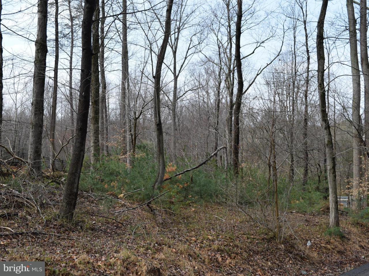 Land for Sale at 895 Georgetown Ridge Ct McLean, Virginia 22102 United States