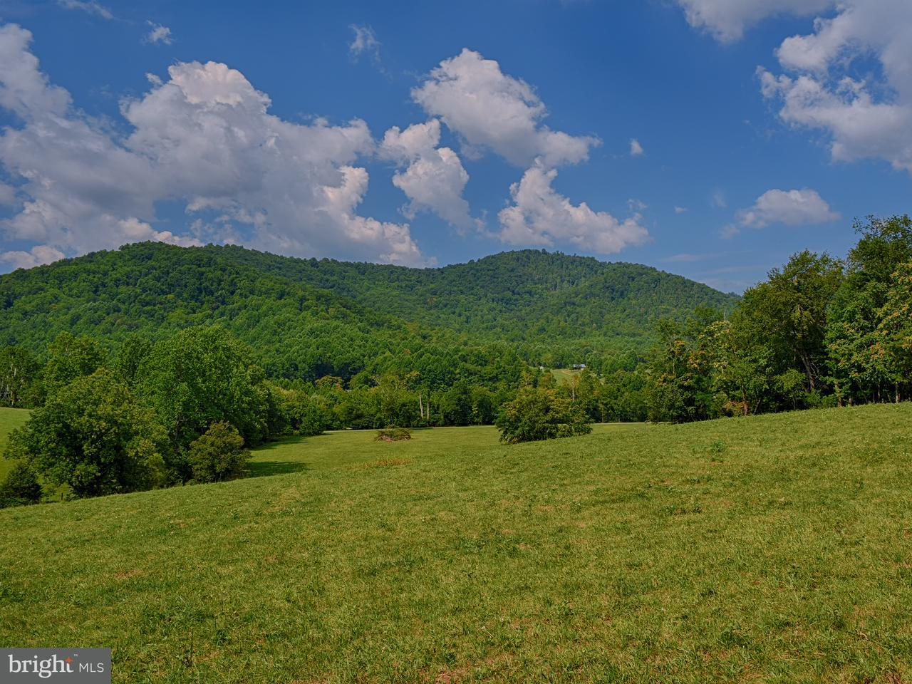 Land for Sale at General Banks Ln Graves Mill, Virginia 22721 United States