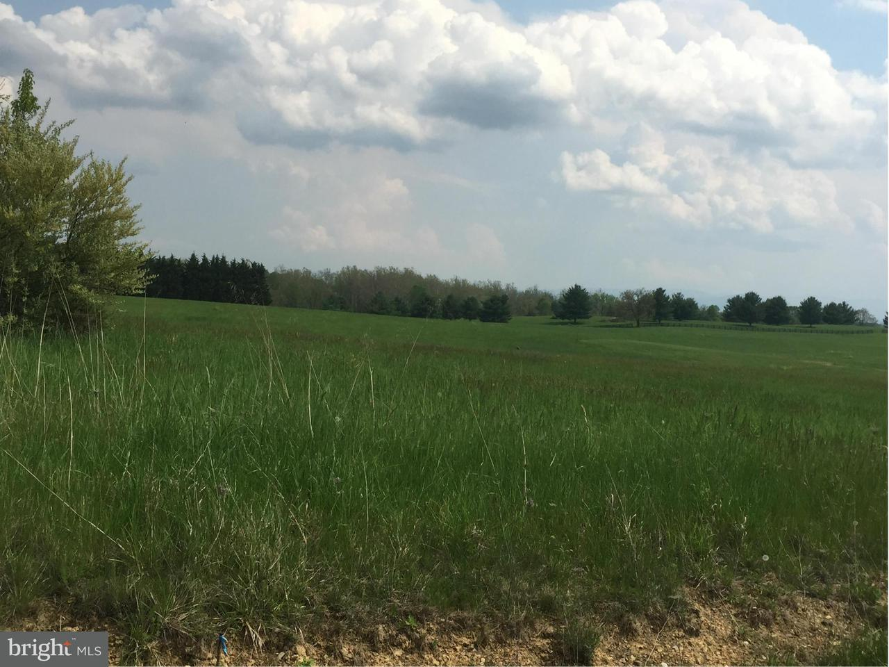 Land for Sale at Darterjo Lot 11 Middletown, Virginia 22645 United States