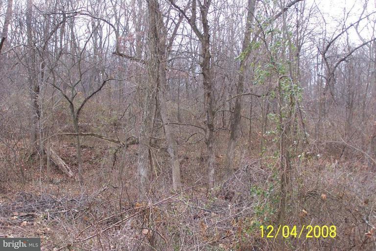 Land for Sale at Lot 1f Crossroads/Cito Road Mc Connellsburg, Pennsylvania 17233 United States