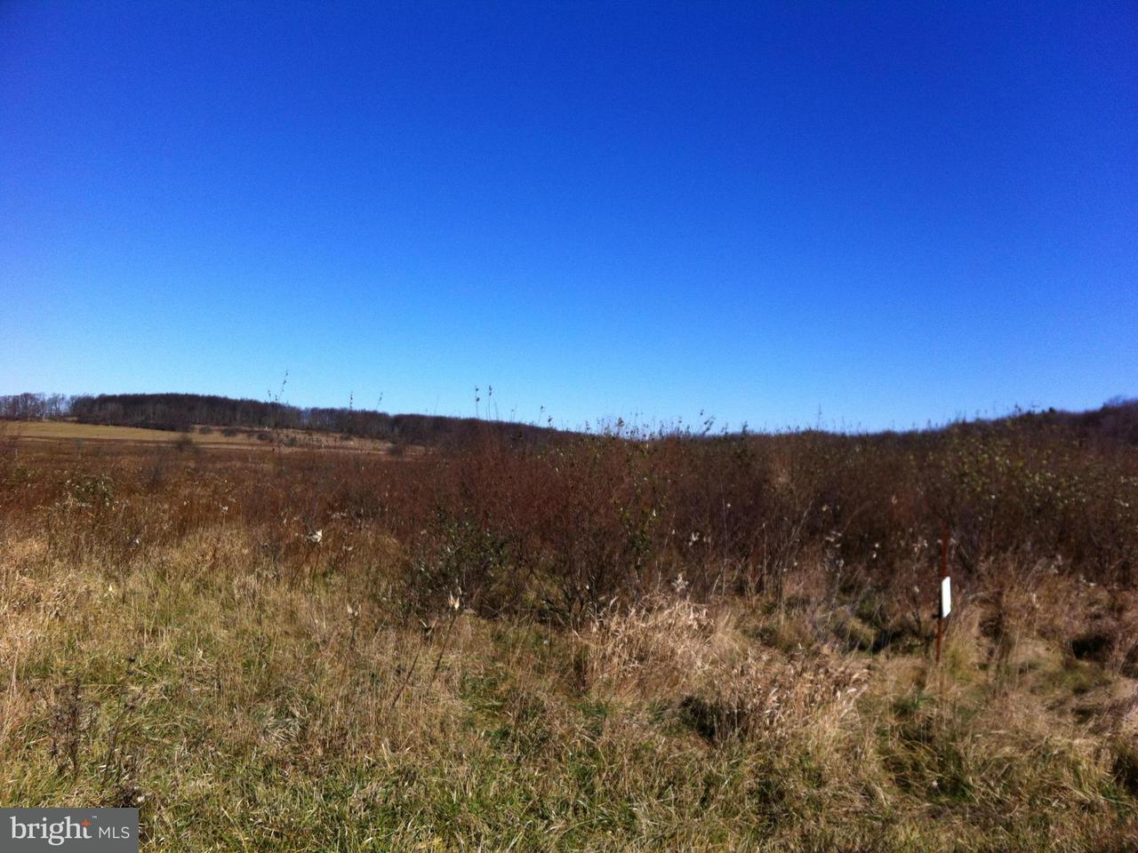 Land für Verkauf beim Bismark Road Bismark Road Mount Storm, West Virginia 26739 Vereinigte Staaten