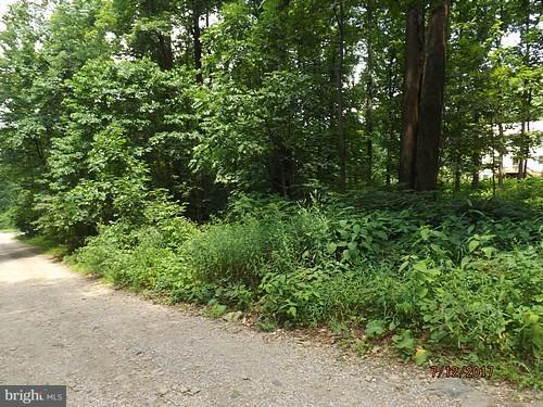 Land for Sale at 0 Apache Trl Chester Gap, Virginia 22623 United States
