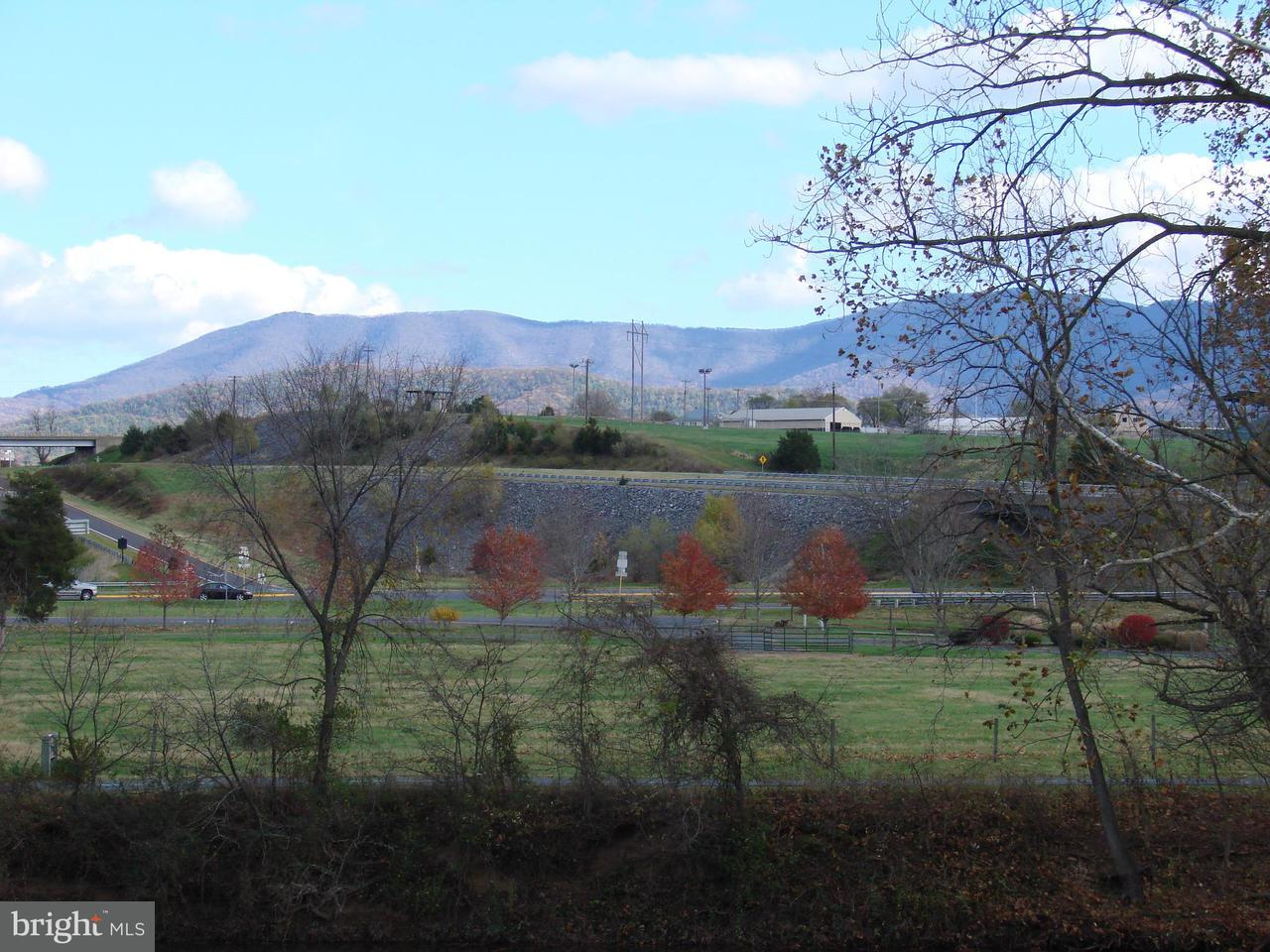 Additional photo for property listing at Furnace  Luray, Virginia 22835 United States