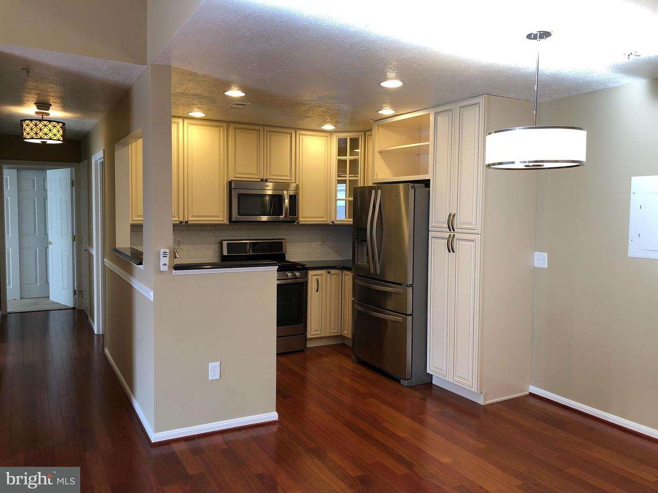 Condominium for Rent at 45511 Westmeath Way #d31 Great Mills, Maryland 20634 United States