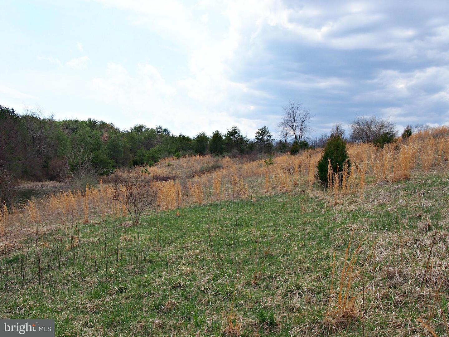 Land for Sale at Puffenburger Ln Hedgesville, West Virginia 25427 United States