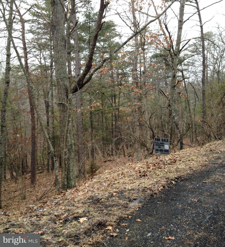 Additional photo for property listing at 0 Deloris Rd  Basye, Virginia 22810 United States
