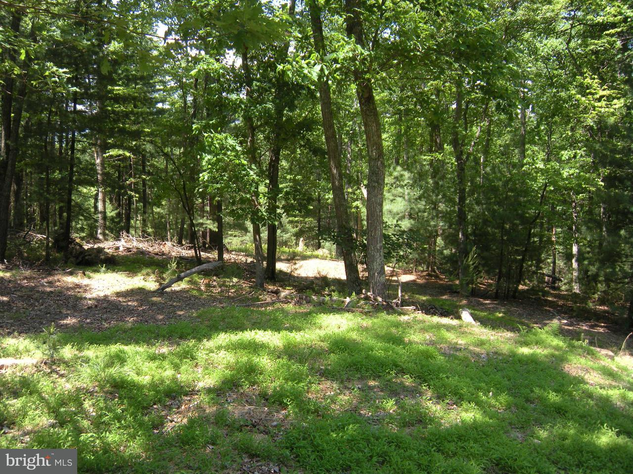 Land for Sale at Lot #101 Mossy Oaks Rd Yellow Spring, West Virginia 26865 United States