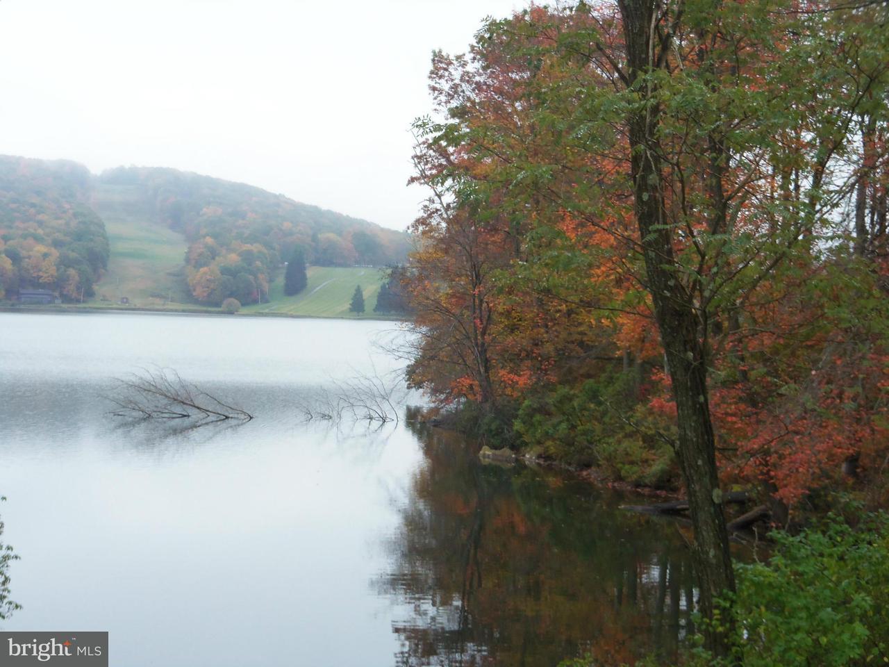 Land for Sale at 3 E Alpine Dr Terra Alta, West Virginia 26764 United States
