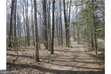 Land for Sale at 10823 Fawn Drive 10823 Fawn Drive Great Falls, Virginia 22066 United States