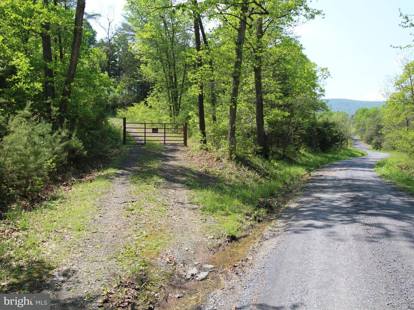 Land for Sale at Oak Tree Ln Fort Valley, Virginia 22652 United States