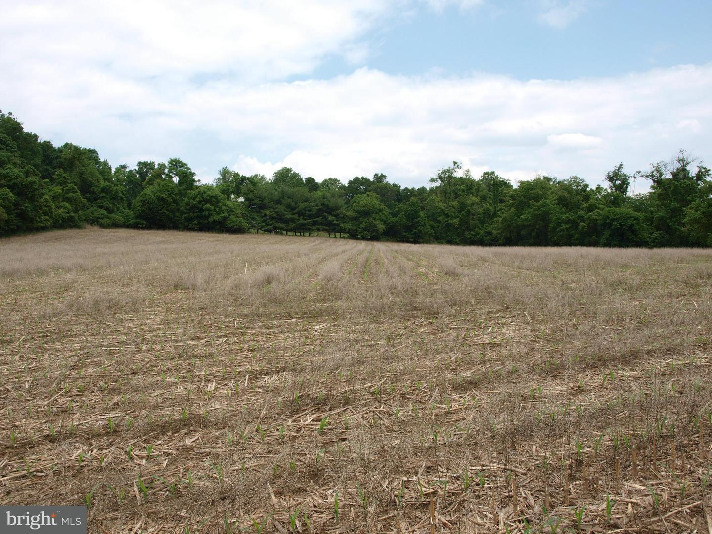 Land for Sale at Jones Rd Whiteford, Maryland 21160 United States