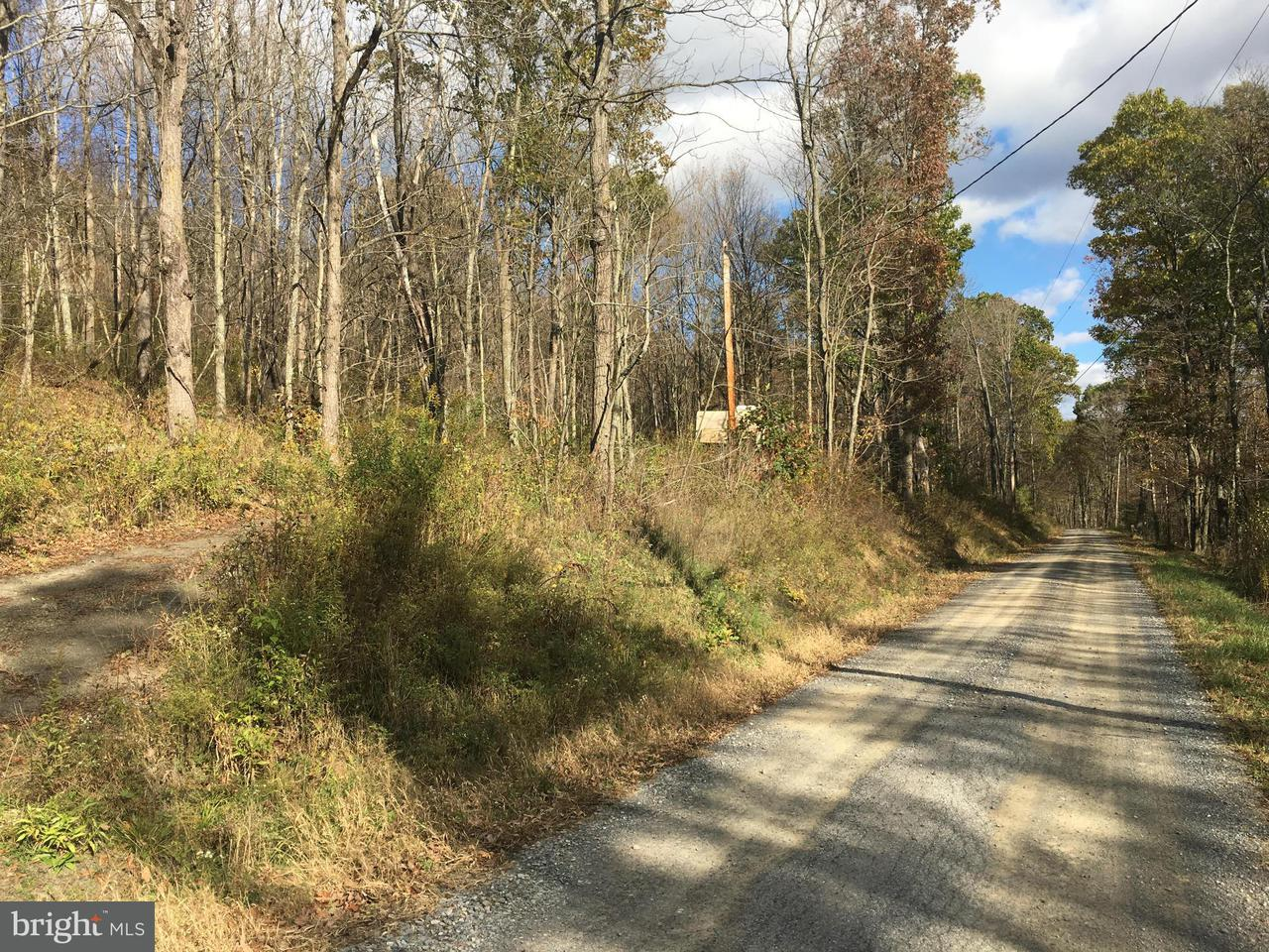 Land for Sale at 0 Teaberry Hollow Road Schellsburg, Pennsylvania 15559 United States