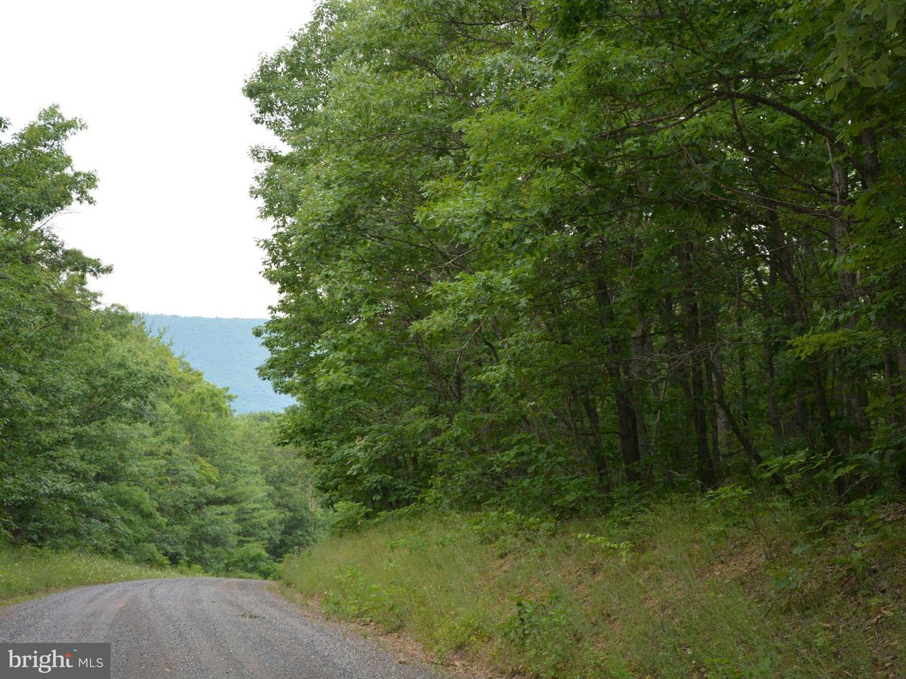 Land for Sale at Polish Mountain Rd Clearville, Pennsylvania 15535 United States