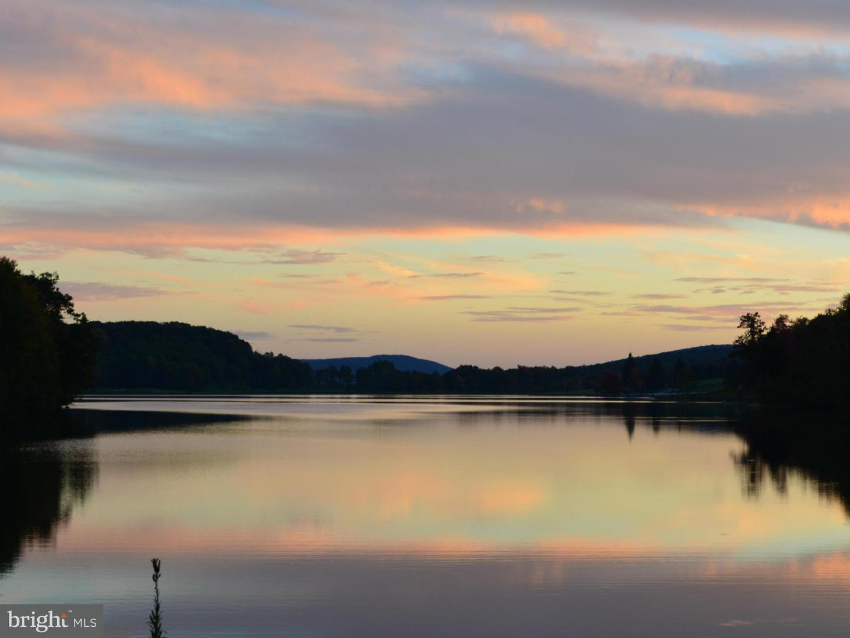 Land for Sale at 29 Goldenrod Dr Terra Alta, West Virginia 26764 United States