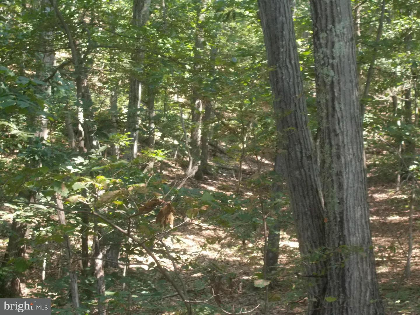 Land for Sale at Rt 28/4 Fort Ashby, West Virginia 26719 United States