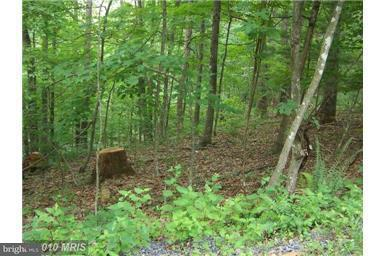 Land for Sale at Willow Ln Basye, Virginia 22810 United States