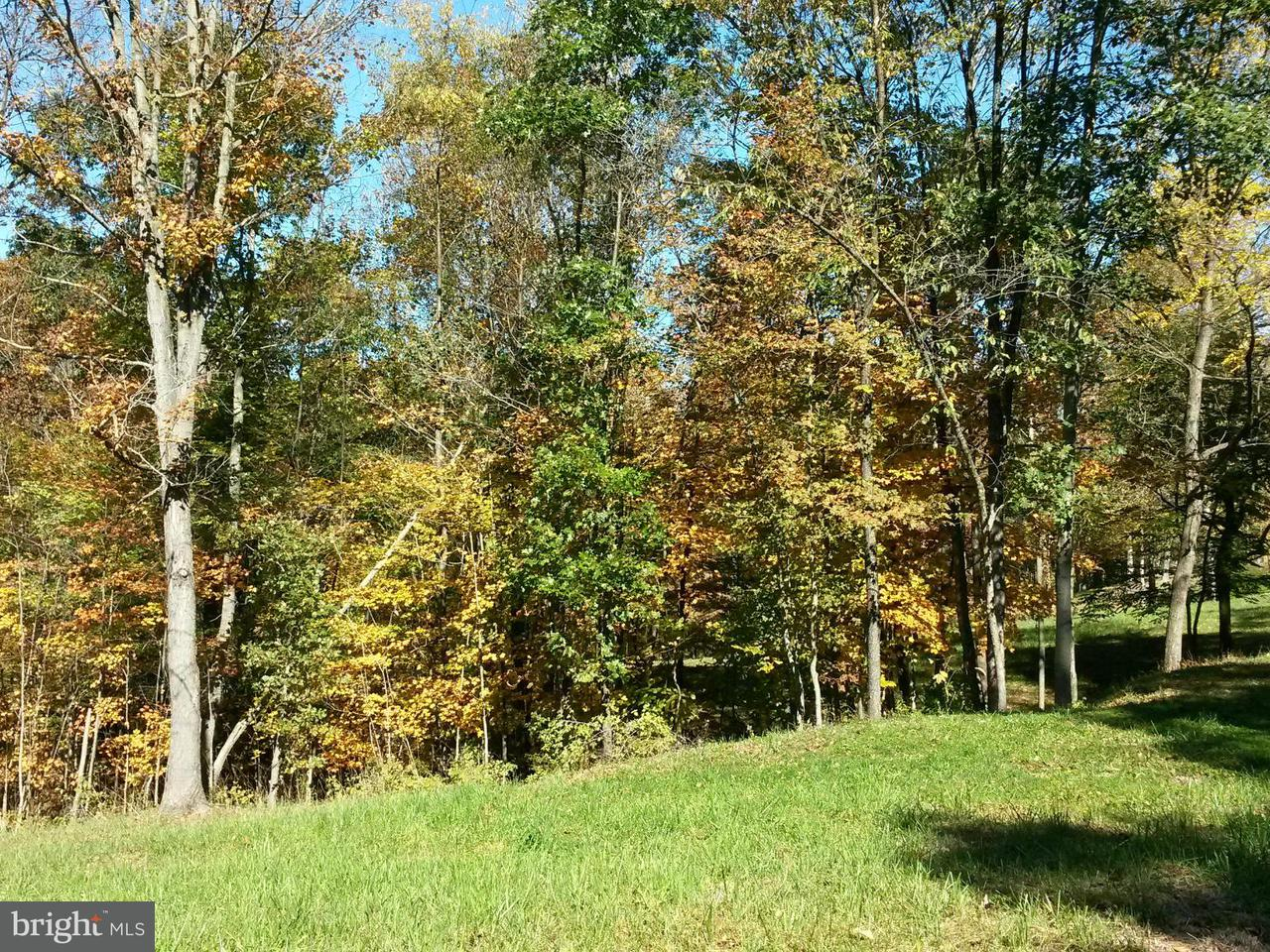 Additional photo for property listing at Sweitzer Ln  Cumberland, Maryland 21502 United States