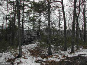Additional photo for property listing at 56lot#,Sec7a Haines Dr  Capon Bridge, West Virginia 26711 United States