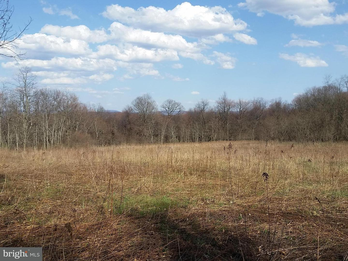 Additional photo for property listing at Squire Fike Rd  Friendsville, Maryland 21531 United States