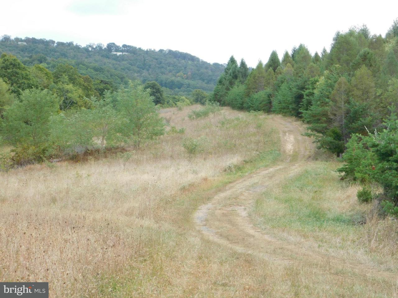 Land for Sale at Beaver Run Burlington, West Virginia 26710 United States