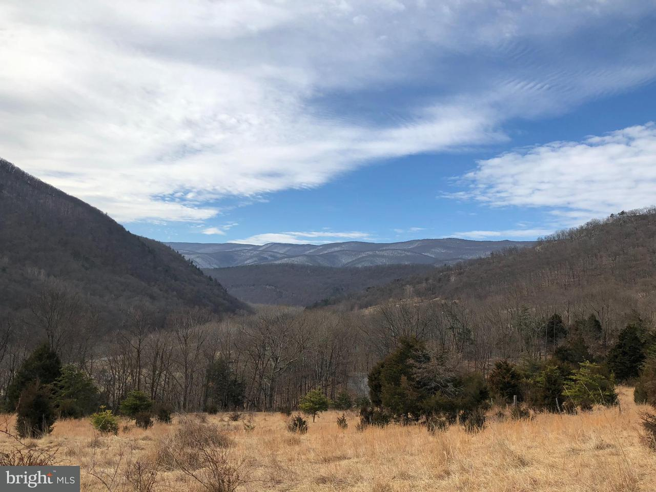 Land for Sale at 195 Wildcat Rd Cabins, West Virginia 26855 United States