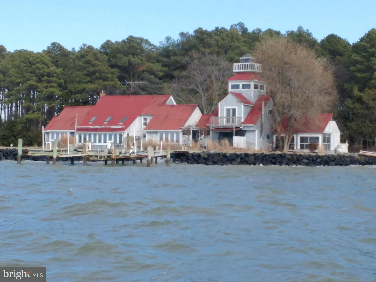 단독 가정 주택 용 매매 에 3858 Punch Island Road 3858 Punch Island Road Taylors Island, 메릴랜드 21669 미국