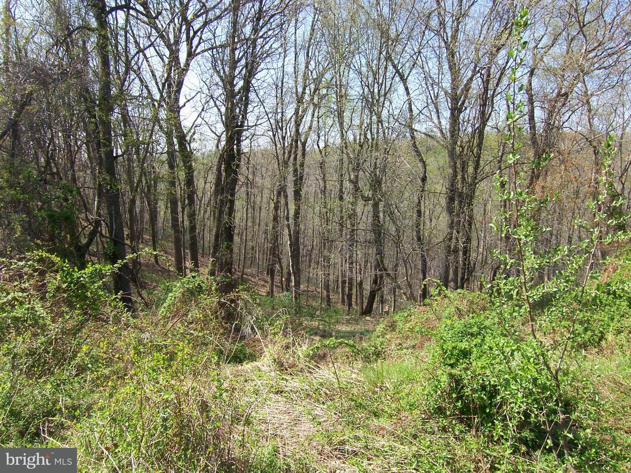 Land for Sale at 4301 Cooper Rd Whiteford, Maryland 21160 United States