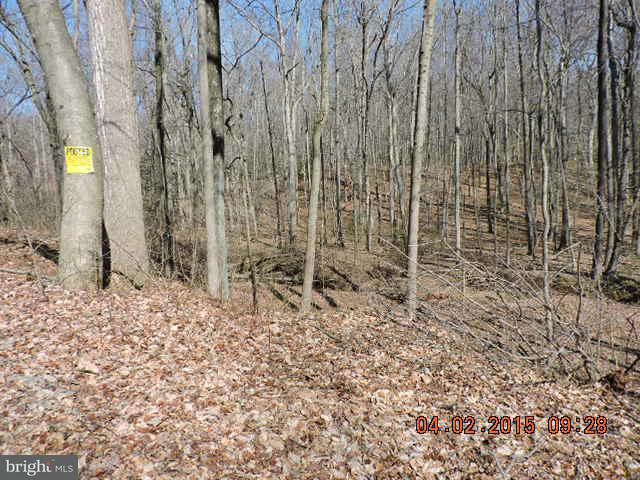 Additional photo for property listing at 0 Turkey Point Rd  North East, Maryland 21901 United States