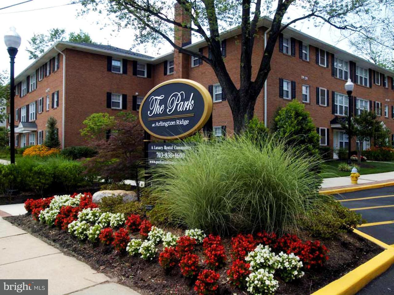 Condominium for Rent at 1800 S. 26th St #101 Arlington, Virginia 22206 United States