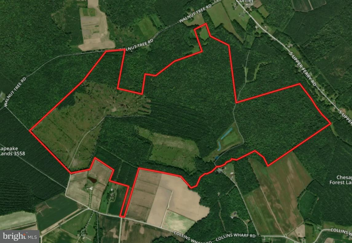 Land for Sale at Walnut Tree Road Walnut Tree Road Eden, Maryland 21822 United States