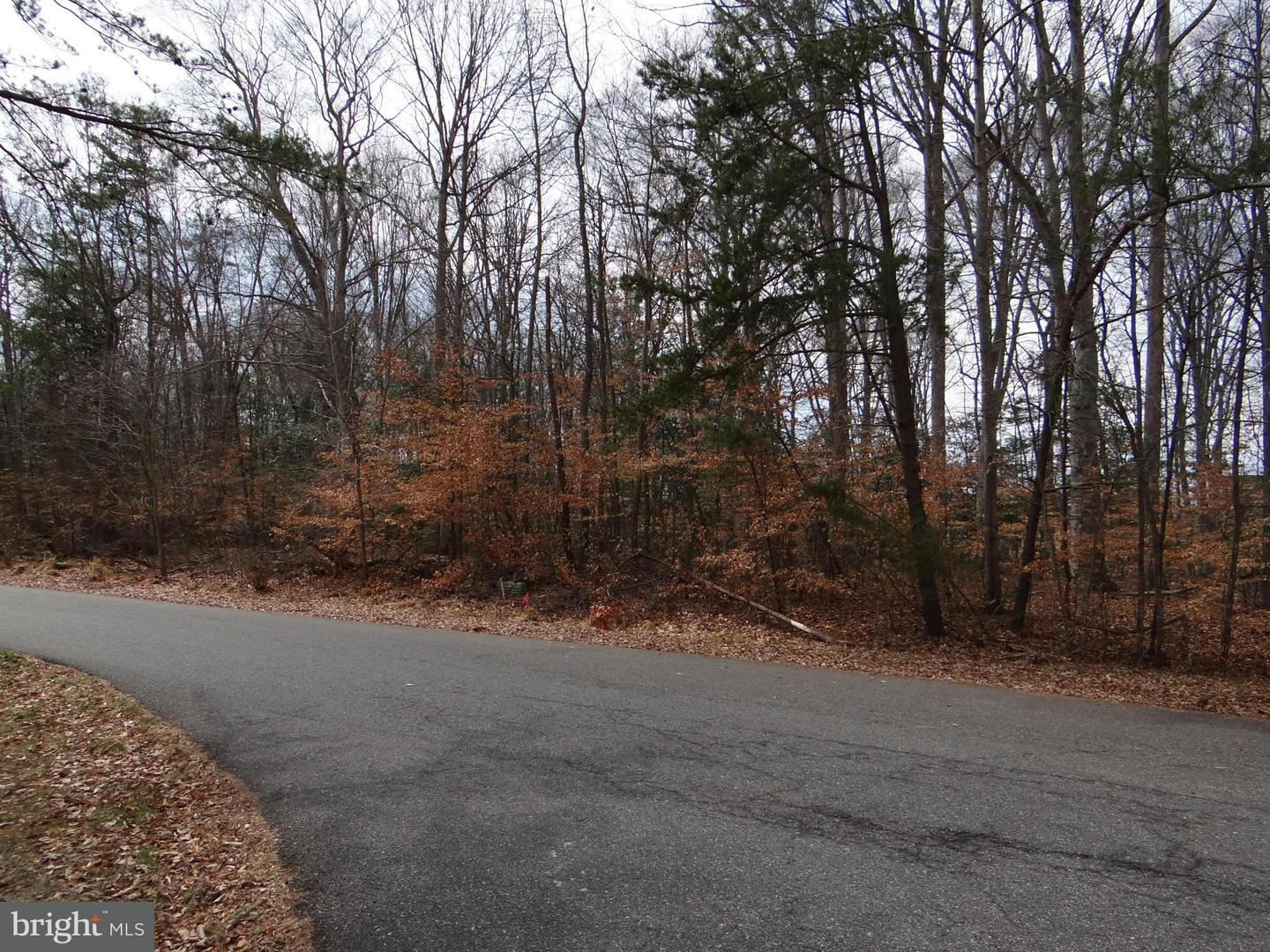 Additional photo for property listing at Clifford Dr  Waldorf, Maryland 20601 United States