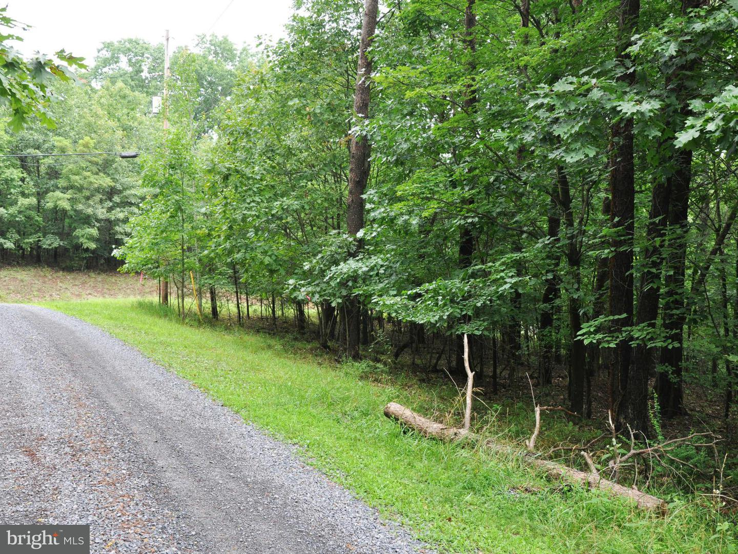 Additional photo for property listing at L-104 Logger Dr  Gore, Virginia 22637 United States