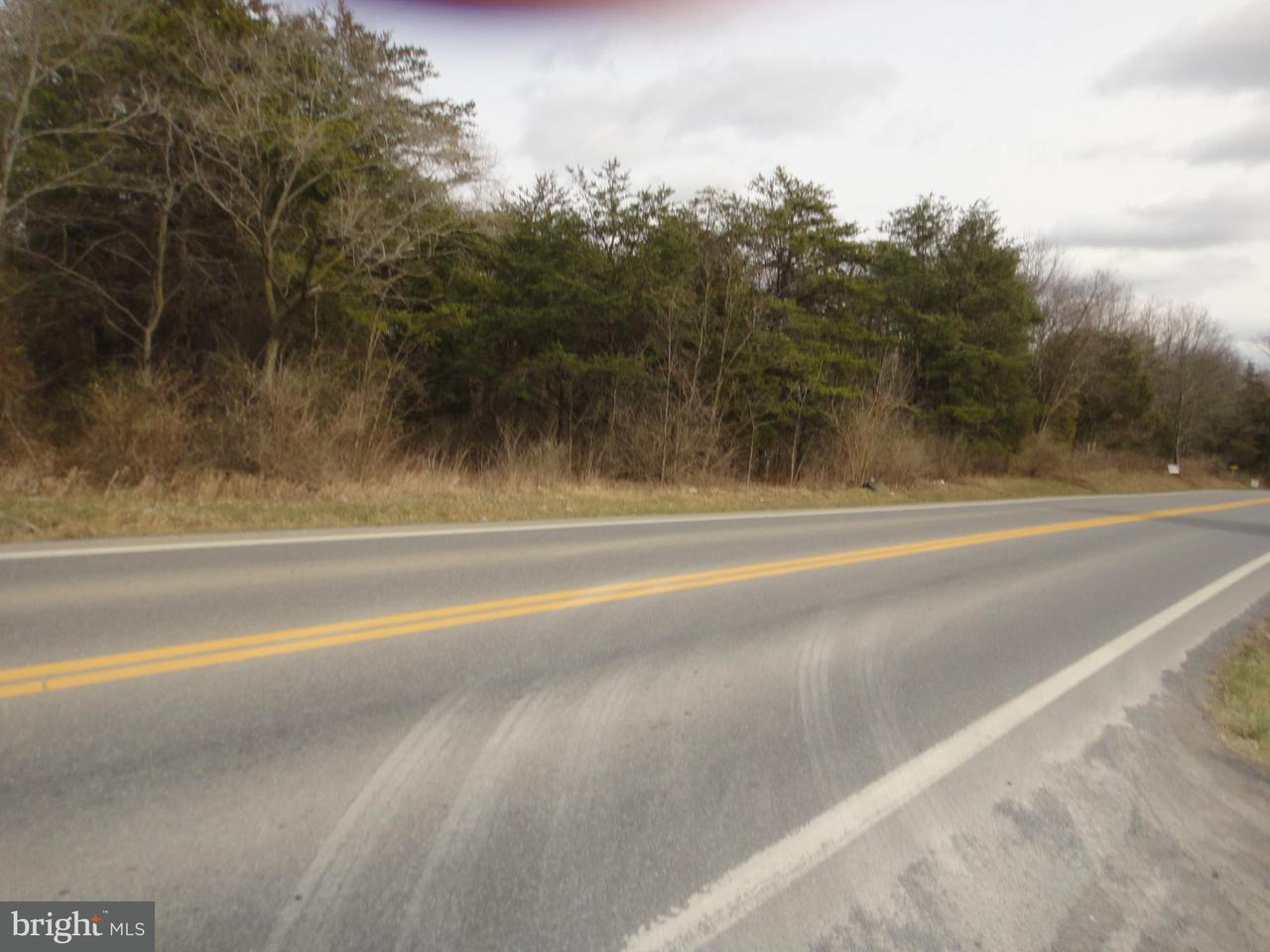 Land for Sale at Nadenbousch Ln Martinsburg, West Virginia 25405 United States