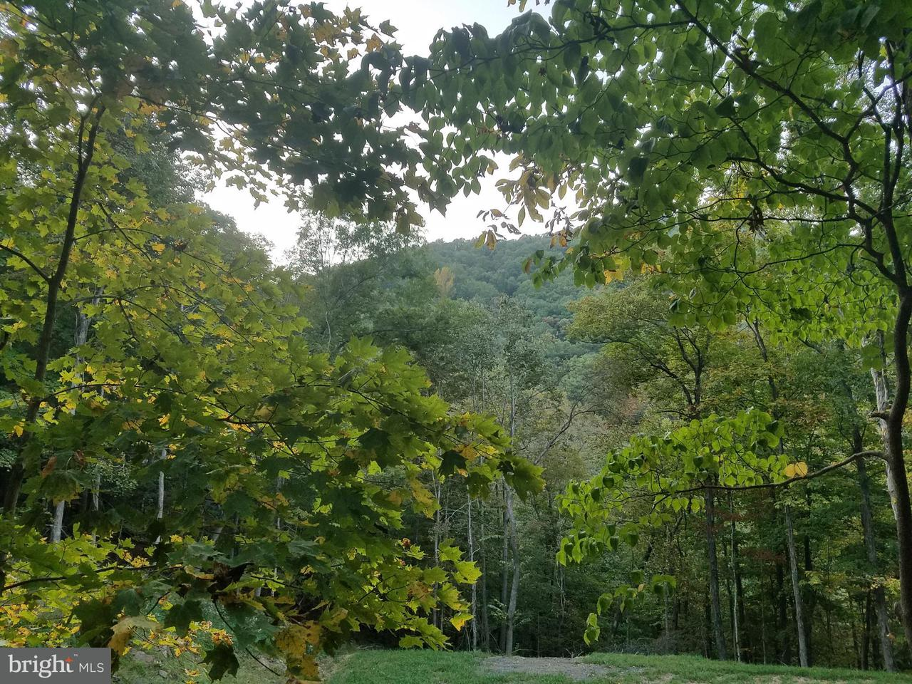 Land for Sale at Edgar Ln Upper Tract, West Virginia 26866 United States