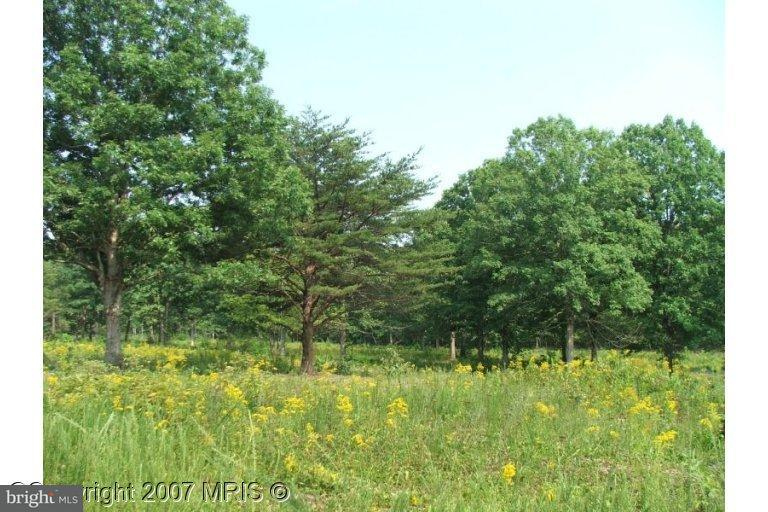 Additional photo for property listing at Kentucky Springs Rd  Mineral, Virginia 23117 United States