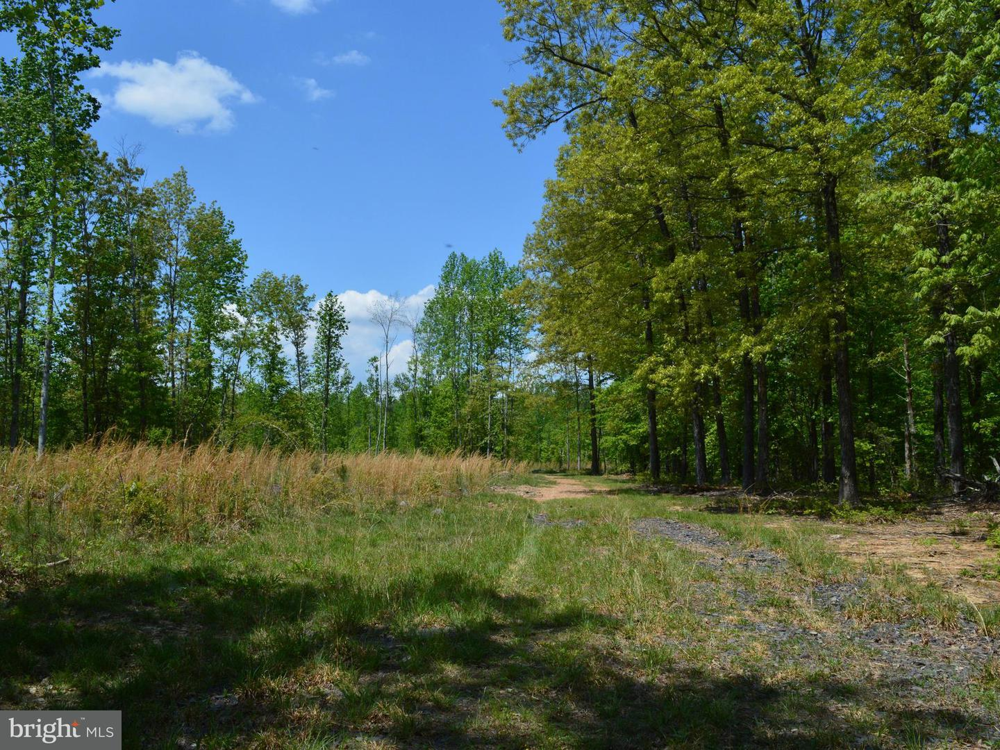 Land for Sale at Walkers Ln Richardsville, Virginia 22736 United States