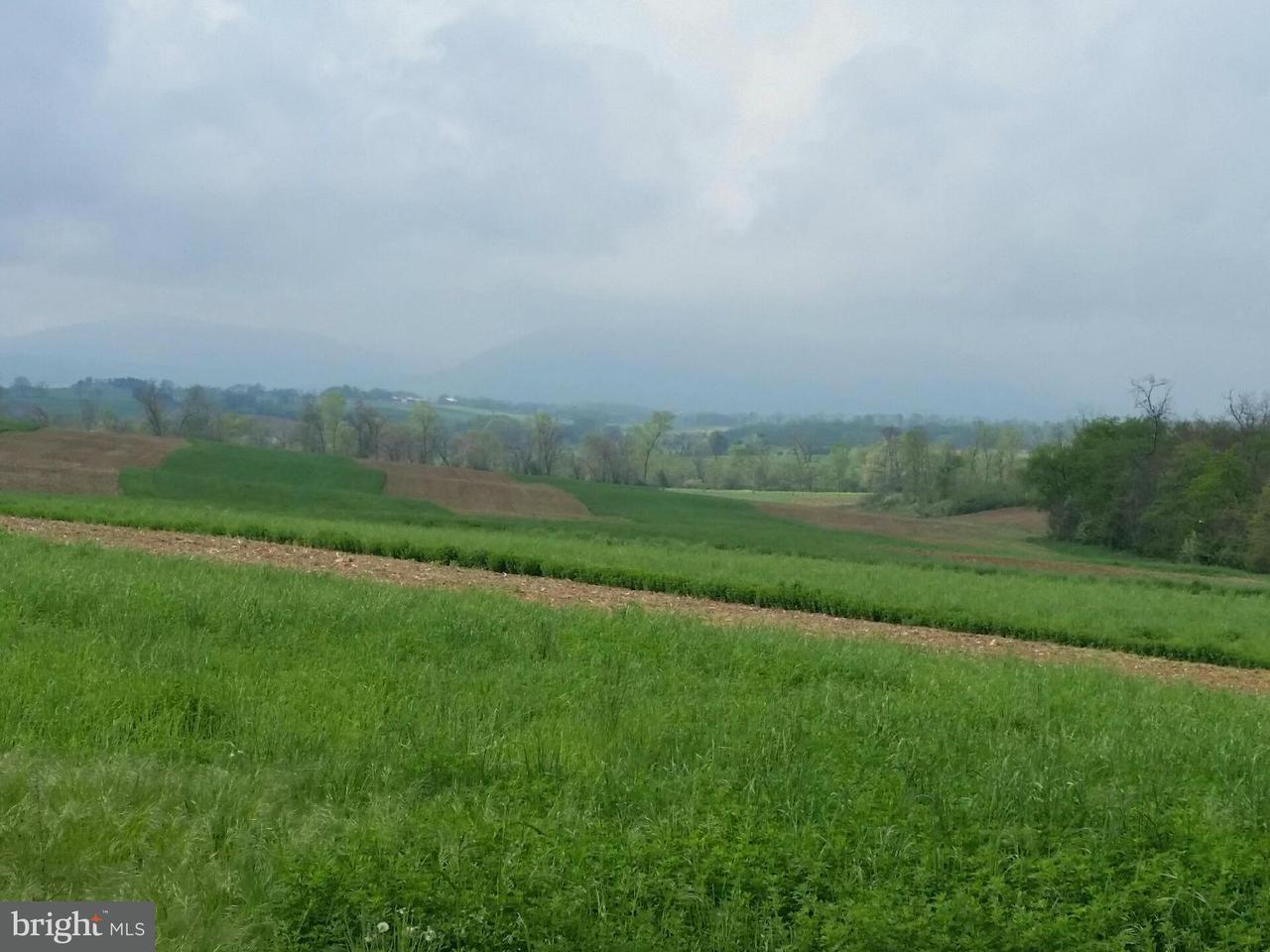 Land for Sale at Buchanan Trl W Mercersburg, Pennsylvania 17236 United States