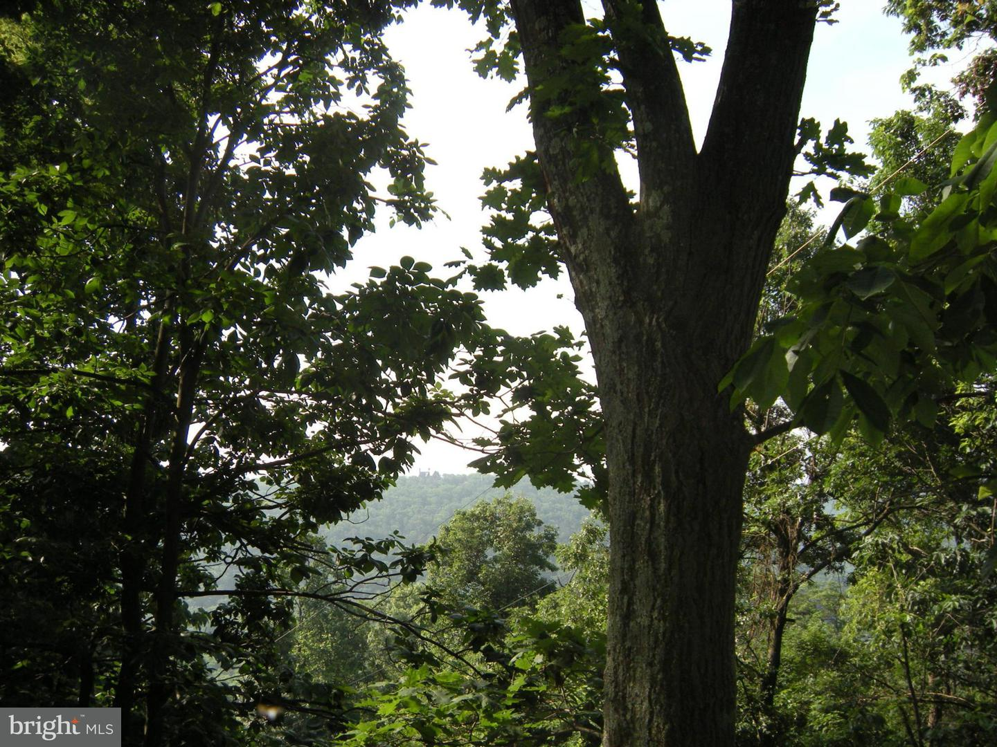 Land for Sale at Lot Trails End Dr Star Tannery, Virginia 22654 United States