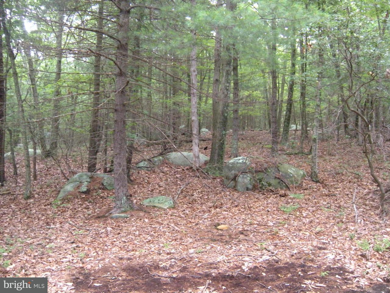 Land for Sale at 36 Dehaven Dr Capon Bridge, West Virginia 26711 United States