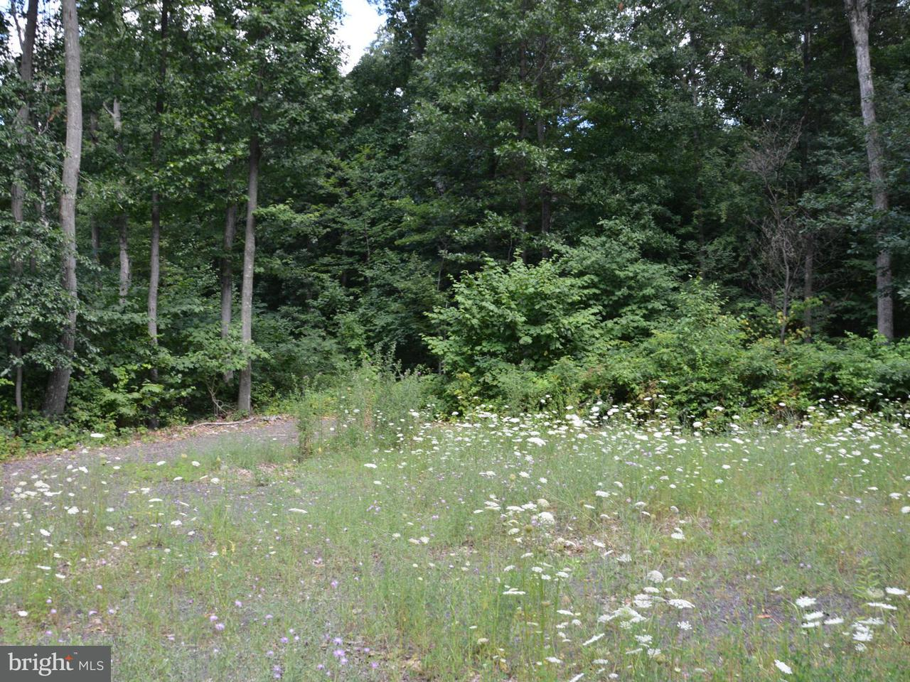 Land for Sale at 0 Egolf Rd Bedford, Pennsylvania 15522 United States