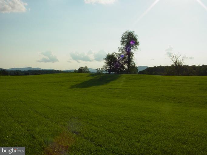 Additional photo for property listing at 45 Chattins Run Ln  Delaplane, Virginia 20144 United States