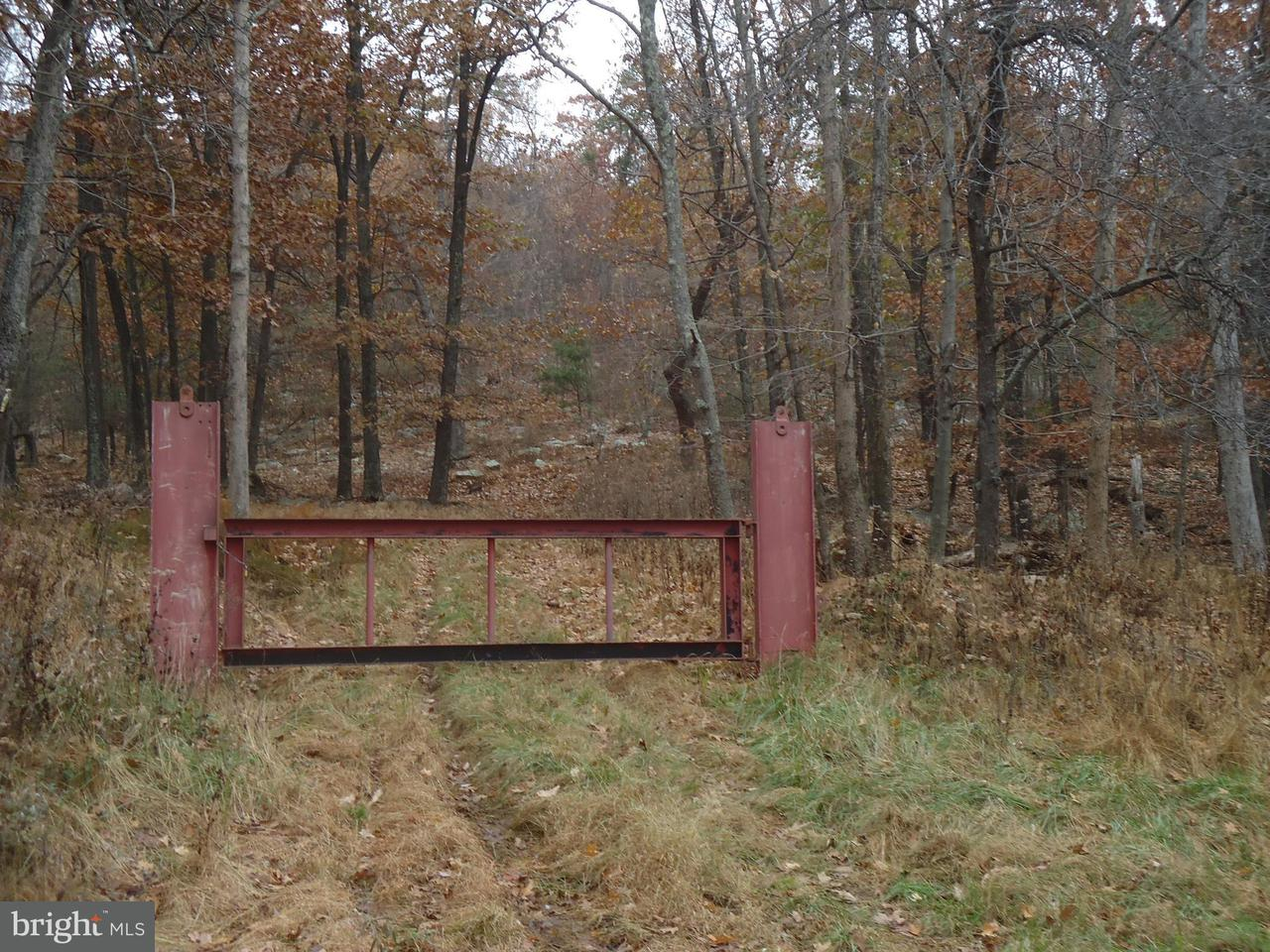 Land for Sale at 0 Penneroil Rd New Creek, West Virginia 26743 United States