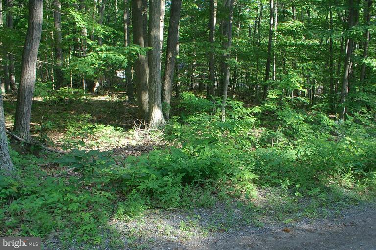 Land for Sale at Racoon Dr Lots 4 And 6 Winchester, Virginia 22602 United States