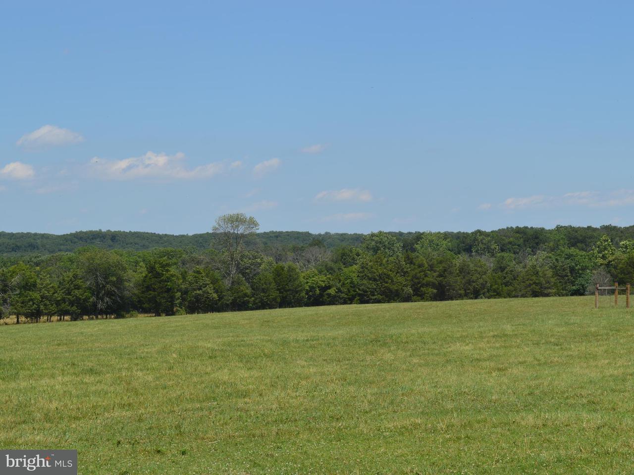 Land for Sale at 6302 Strasburg Rd Strasburg, Virginia 22657 United States