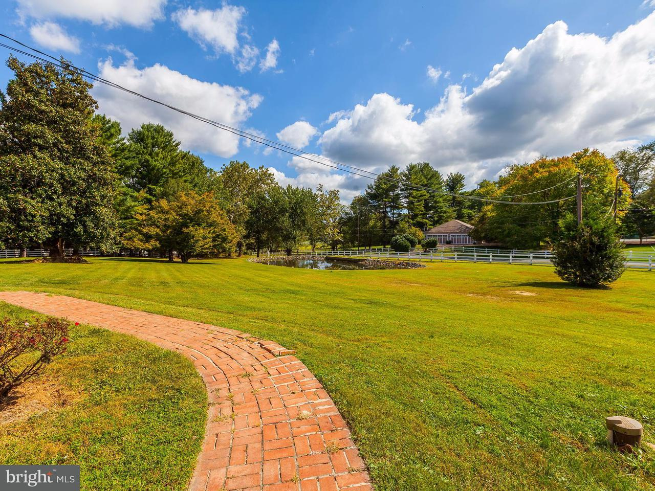 Additional photo for property listing at 9030 Bronson Dr  Potomac, Maryland 20854 United States