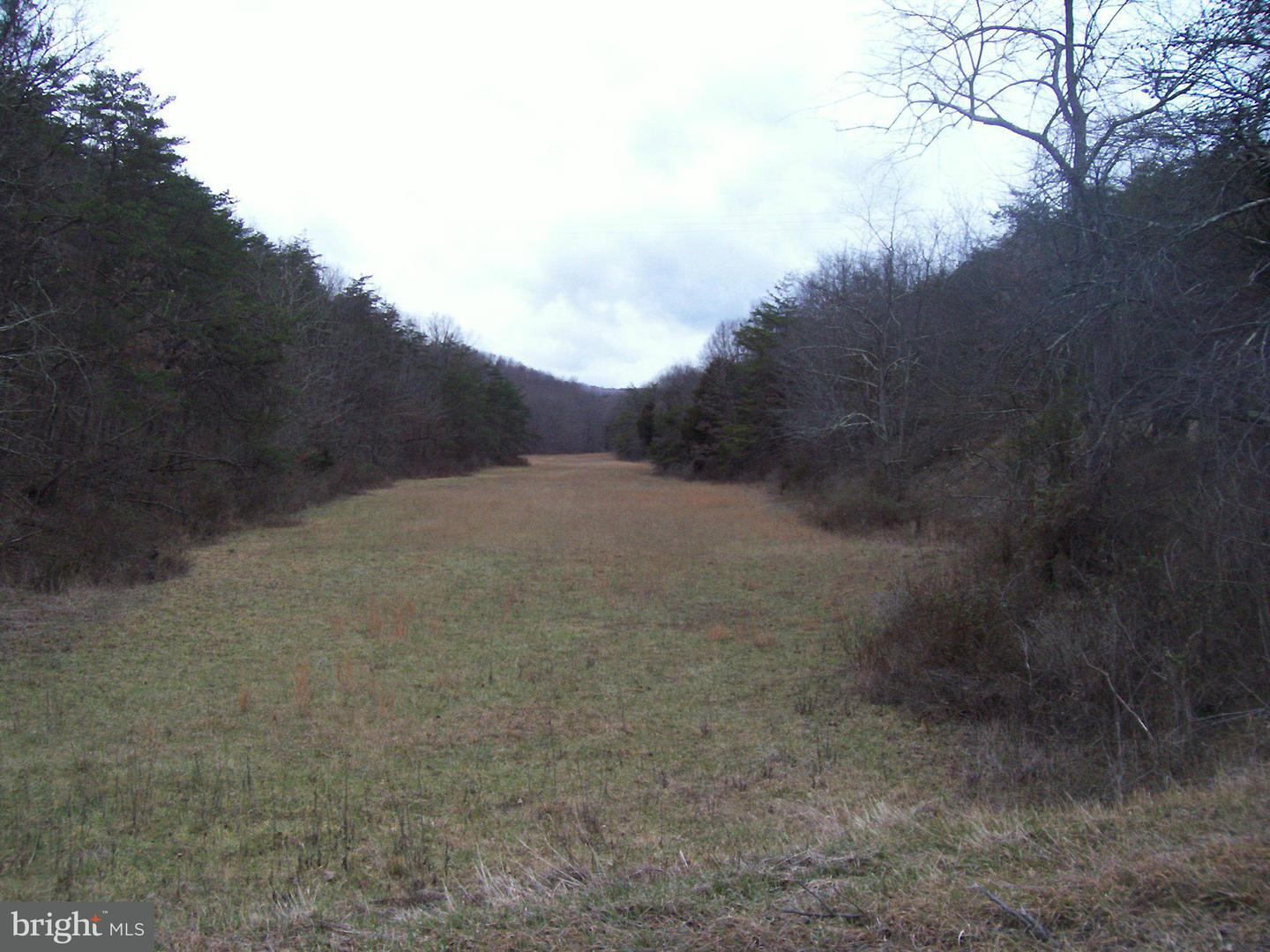 Land for Sale at Off Rt. 220 North Purgitsville, West Virginia 26852 United States